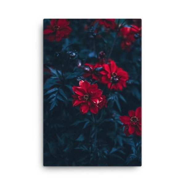 Red Flowers Photo Print Canvas
