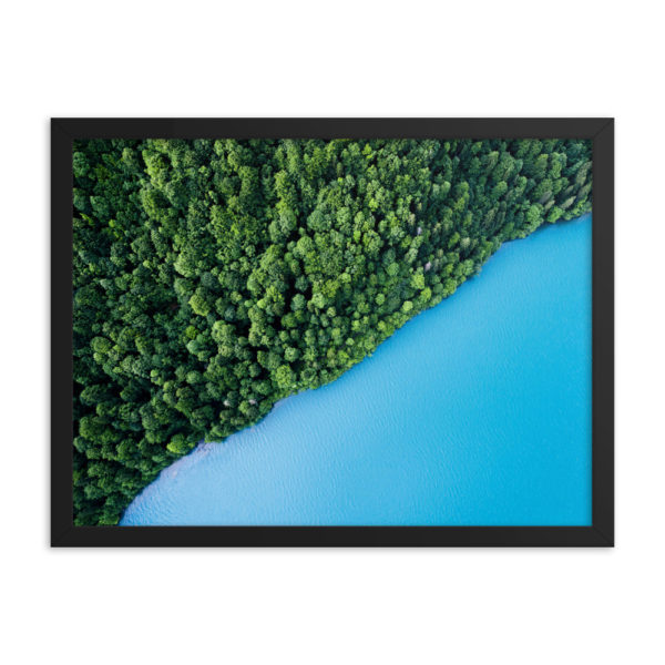 Tree Forest with border of the Sea. Framed Photo Poster